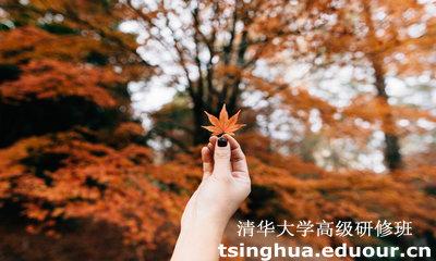 报名参加清华大学高级研修班的流程
